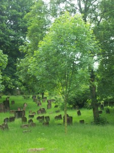 Jewish cemetery in Worms, Germany